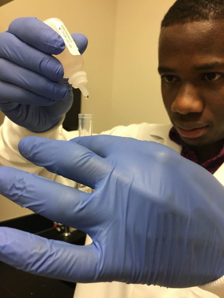 Scientist examines malaria sample - Texas BioMed