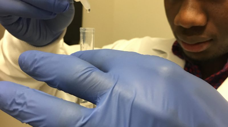 Scientist examines malaria sample - Texas BioMed