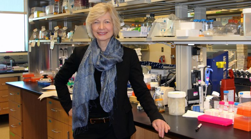 Texas BioMed's Dr. Ruth Ruprecht led a team that showed an antibody called Immunoglobulin M (IgM) was effective in preventing AIDS infection.