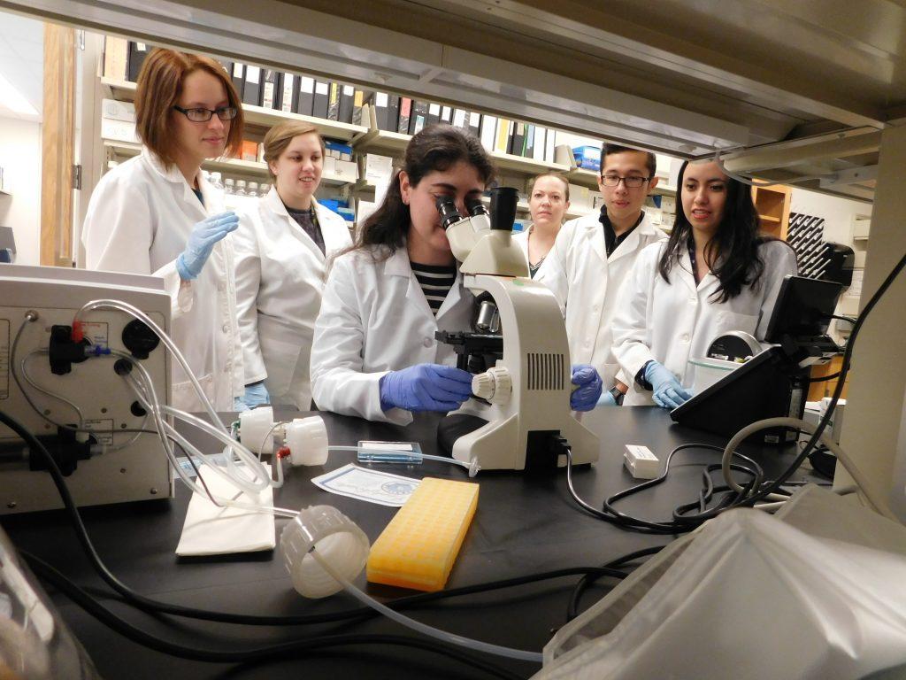 (From left) Scientists Eusondia Arnett, Jeanine Locke, Ariana Duffey, Chrissy Leopold Wager, Leonardo Aguilar, and Maria Montoya collaborate in a lab at Texas Biomed. Courtesy photo.