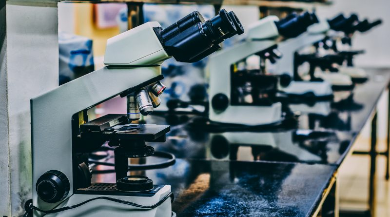 A row of microscopes in a lab. Photo by Ousa Chea on Unsplash