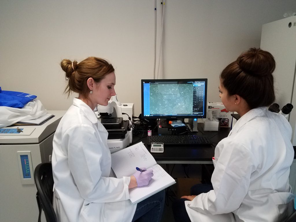 Lauren Cornell (left) and Bianca Cerqueira (right) examine some data from their mice study for Novothelium, courtesy photo.