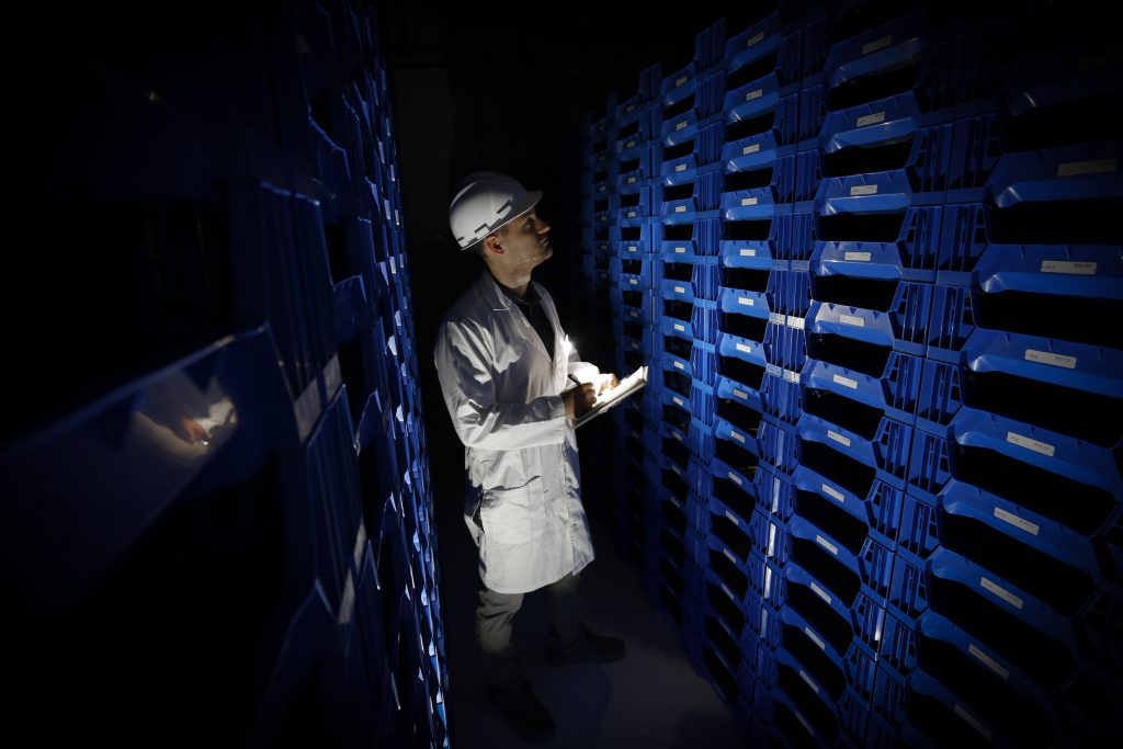 Manna Foods CEO Luke Wright checks on beetles in a vertical farm,. Courtesy photo.